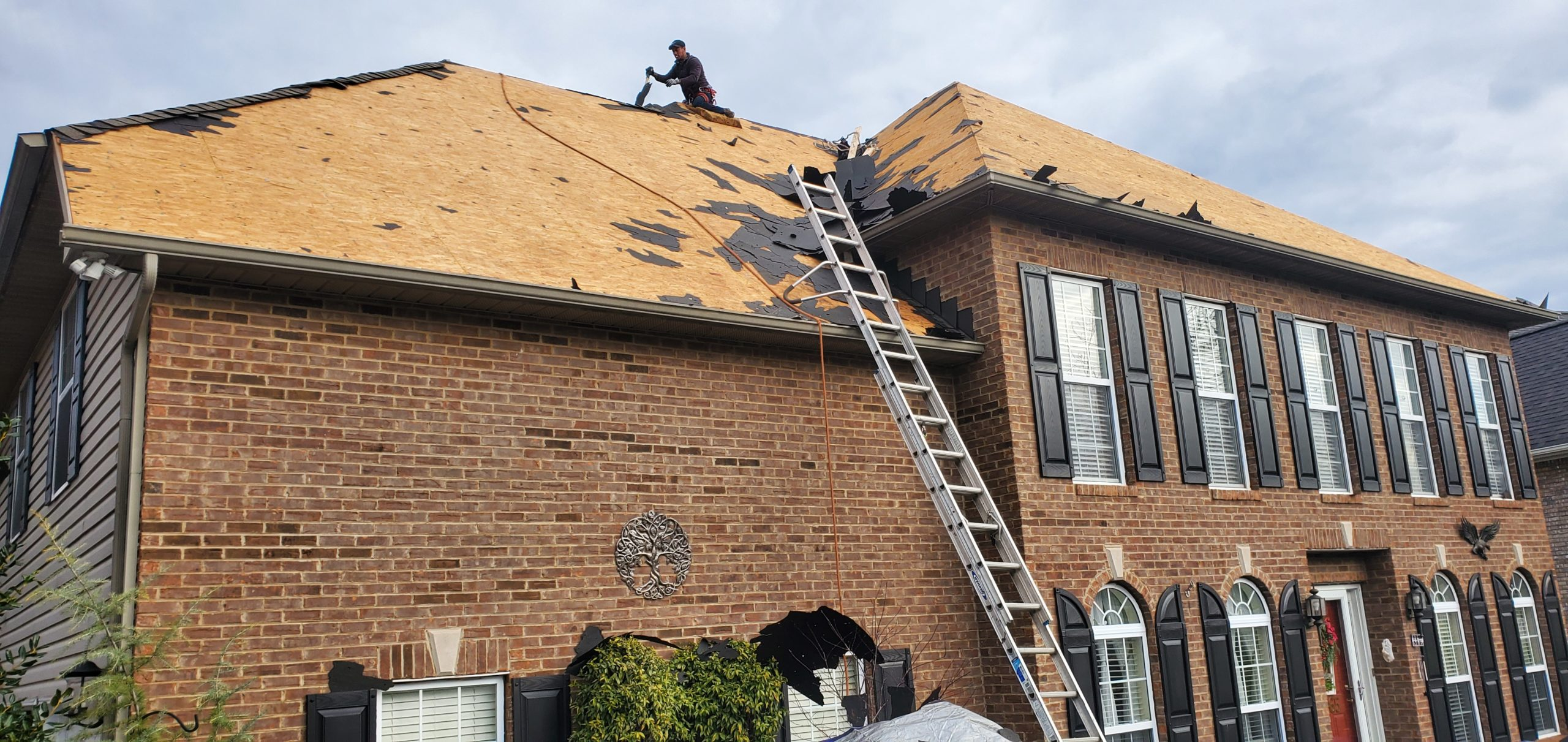 This is a view of the roof from the ground. Shingles have been removed.