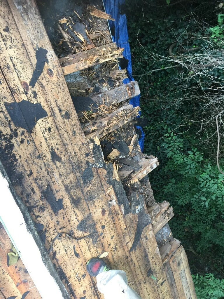 This is a view of rotten boards at the roof edge.