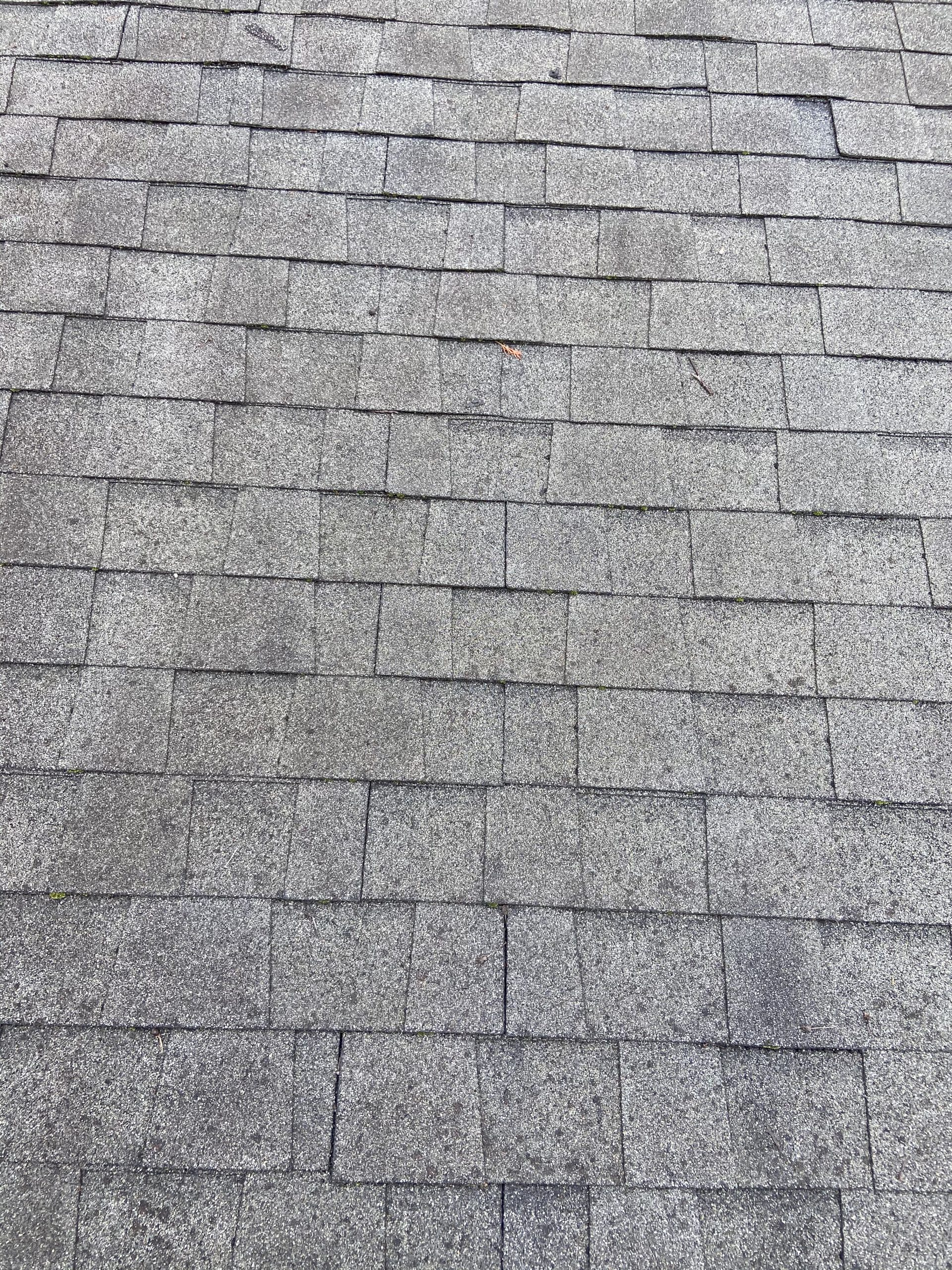 This is an image of dimensional shingles that have damage.