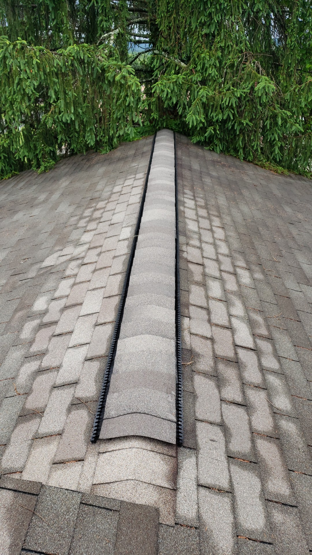 This is a picture of the ridge of the roof with gray shingles.