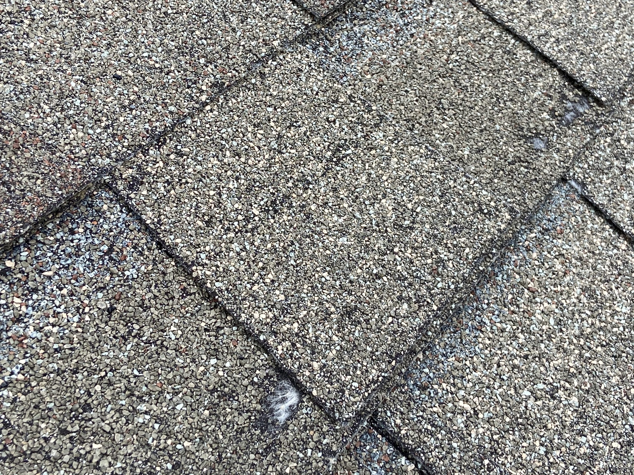 This is a picture of shingles color weathered wood with exposed fiberglass mat.