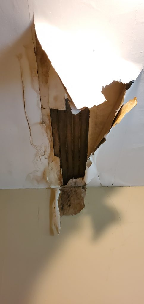 here is a roof leak that has caused drywall to fail and fall