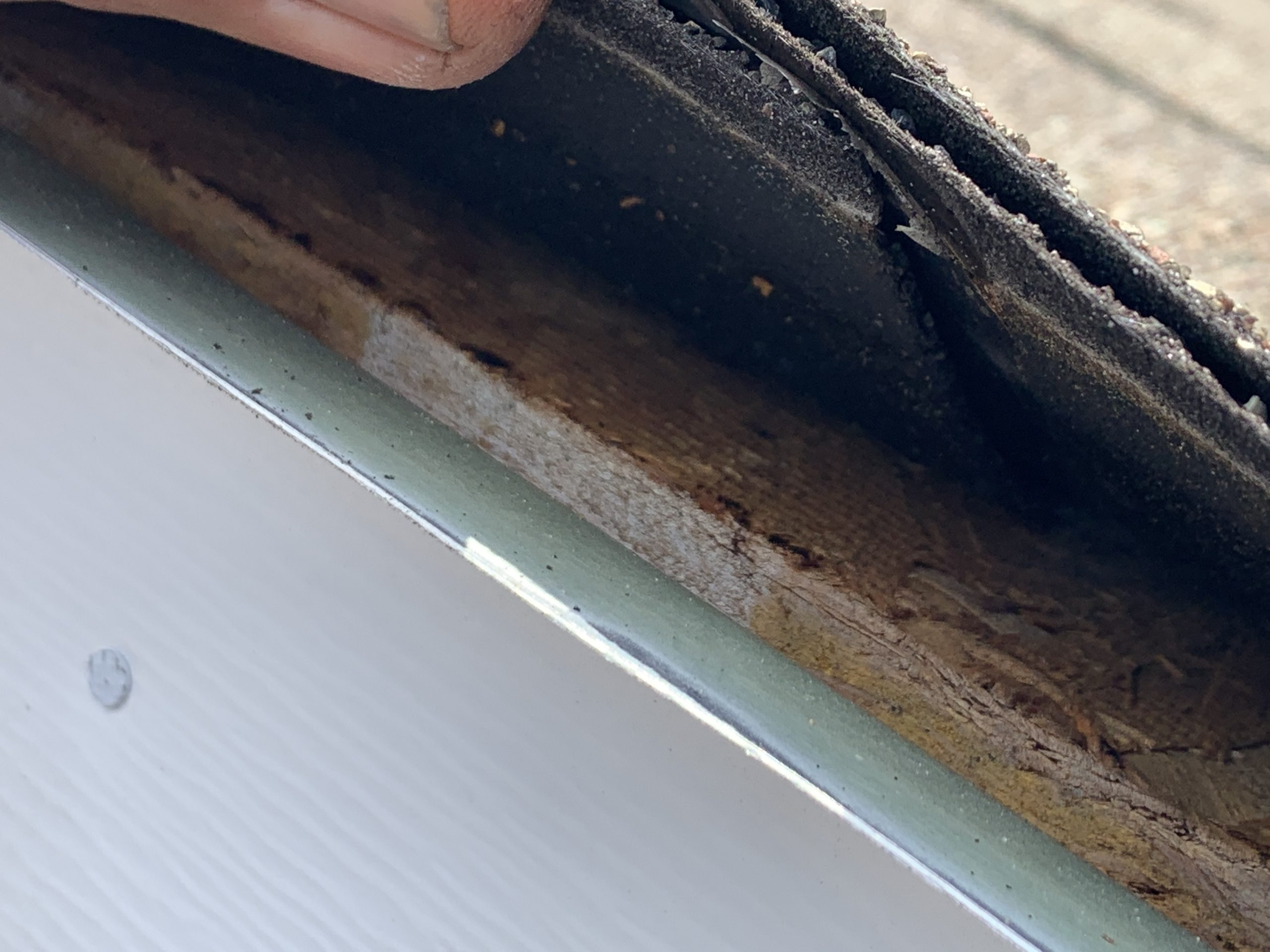 this is a picture of the edge of a roof where the shingles are getting lifted to reveal the osb board condition
