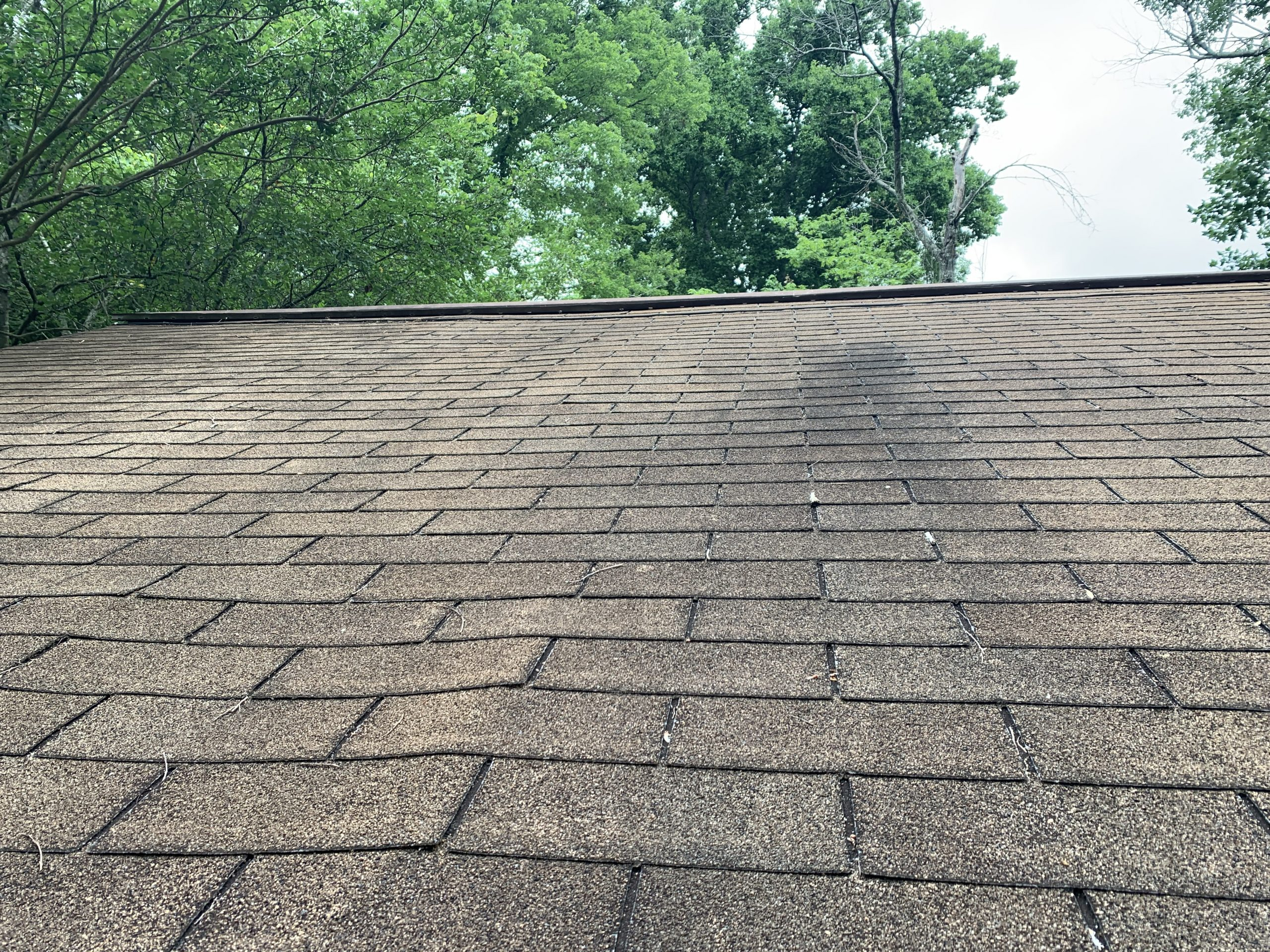 this is a picture showing how bad of condition that the old shingle roof is in