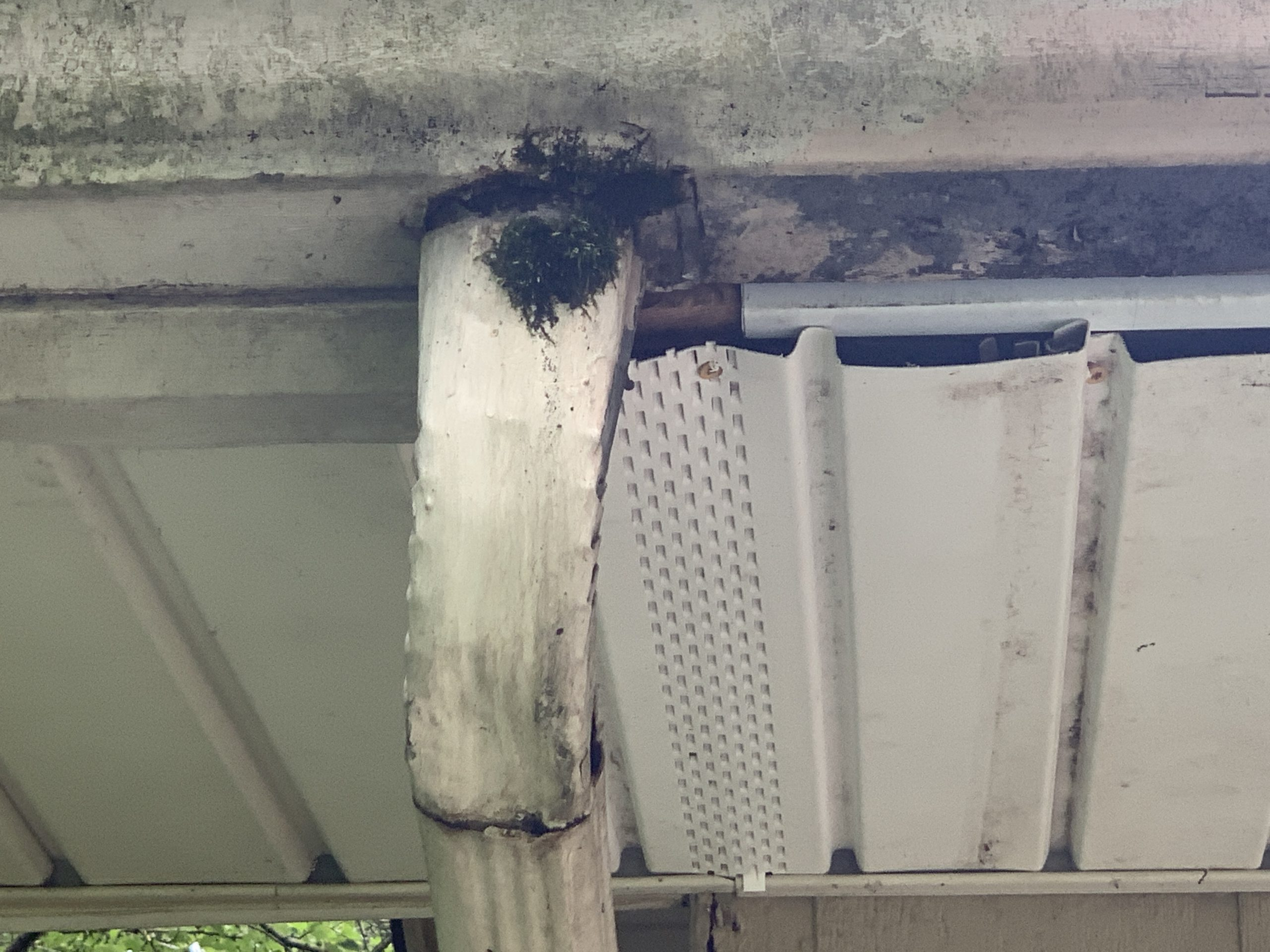 this is a picture of a gutter downspout that has been poorly repaired with roofing cement