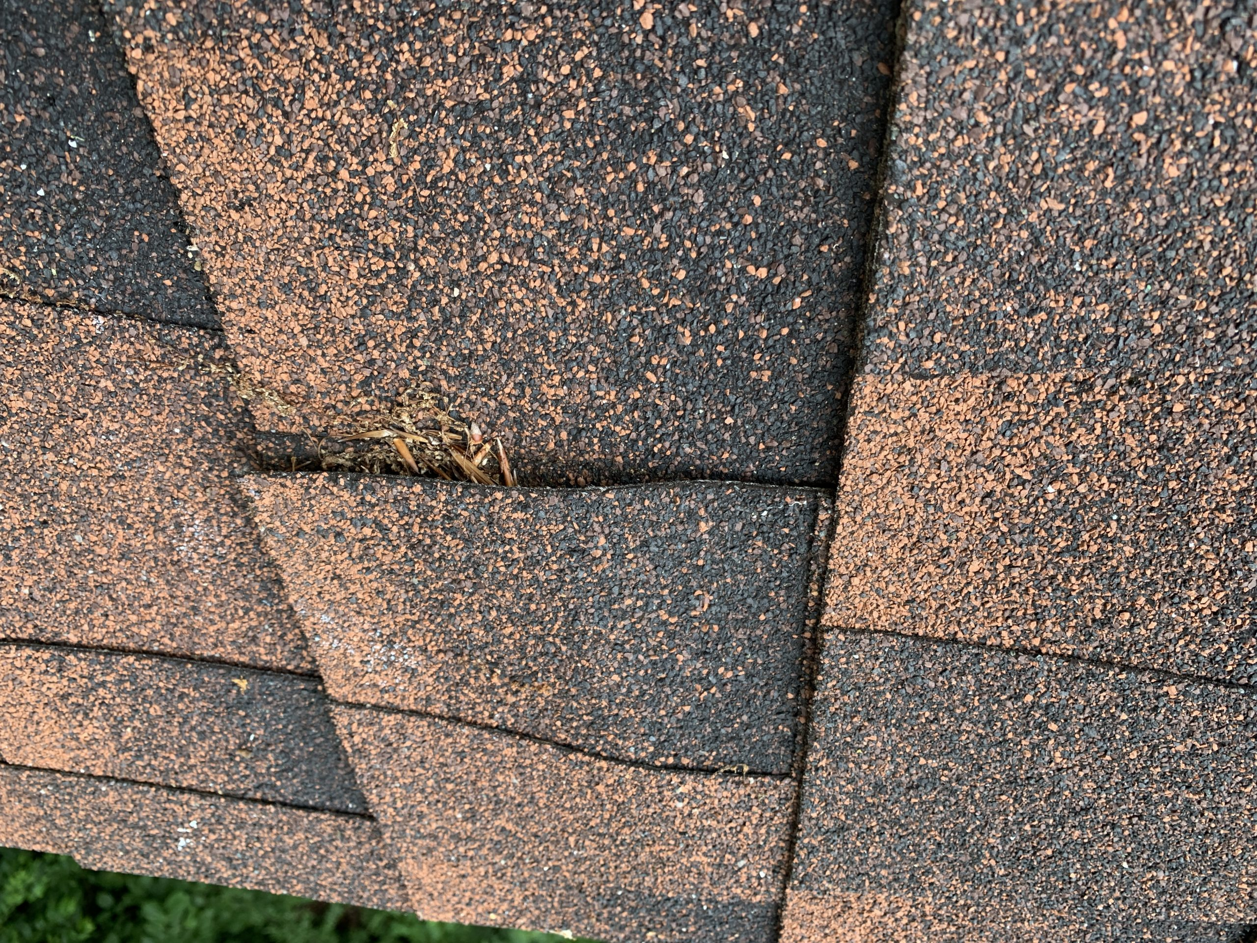 this is a close up picture of gaf timberline hickory colored shingles in knoxville tn