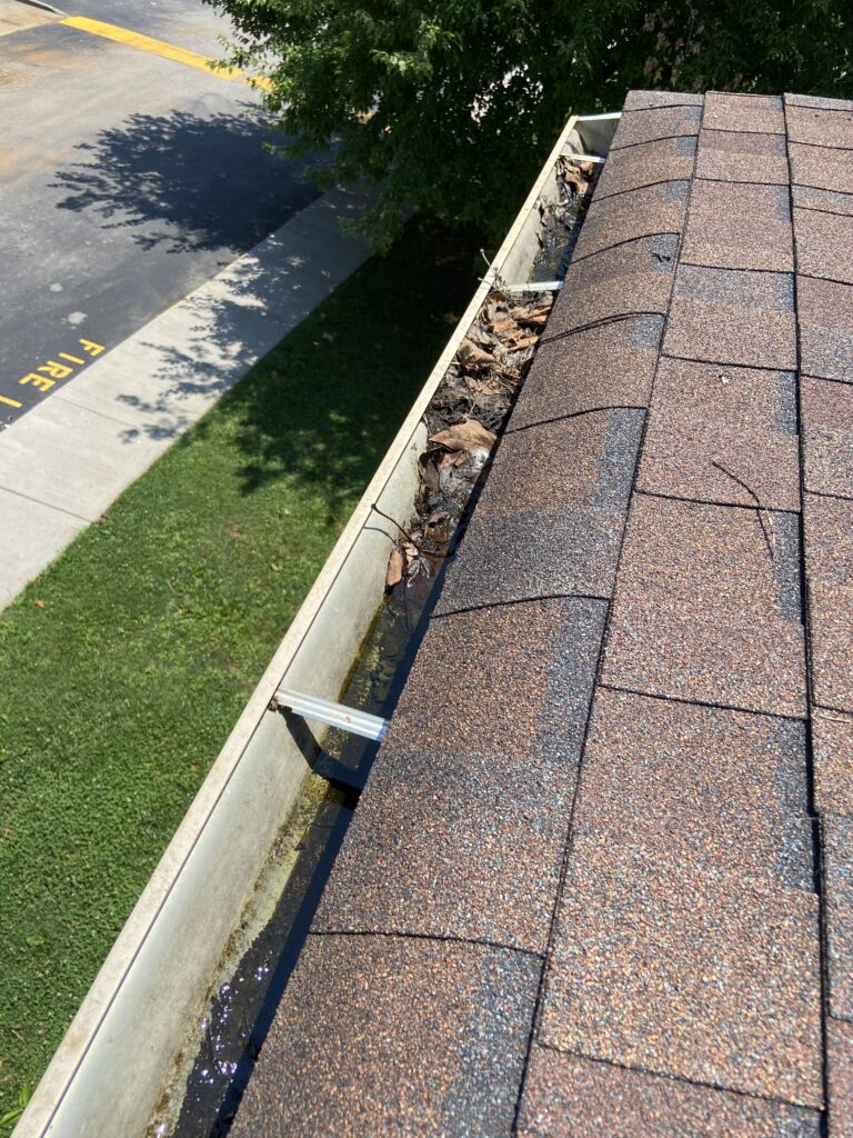 Gutters need Cleaned