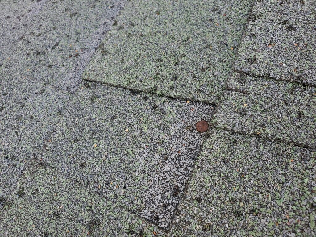 This is a picture of a nail popping out of the shingle.