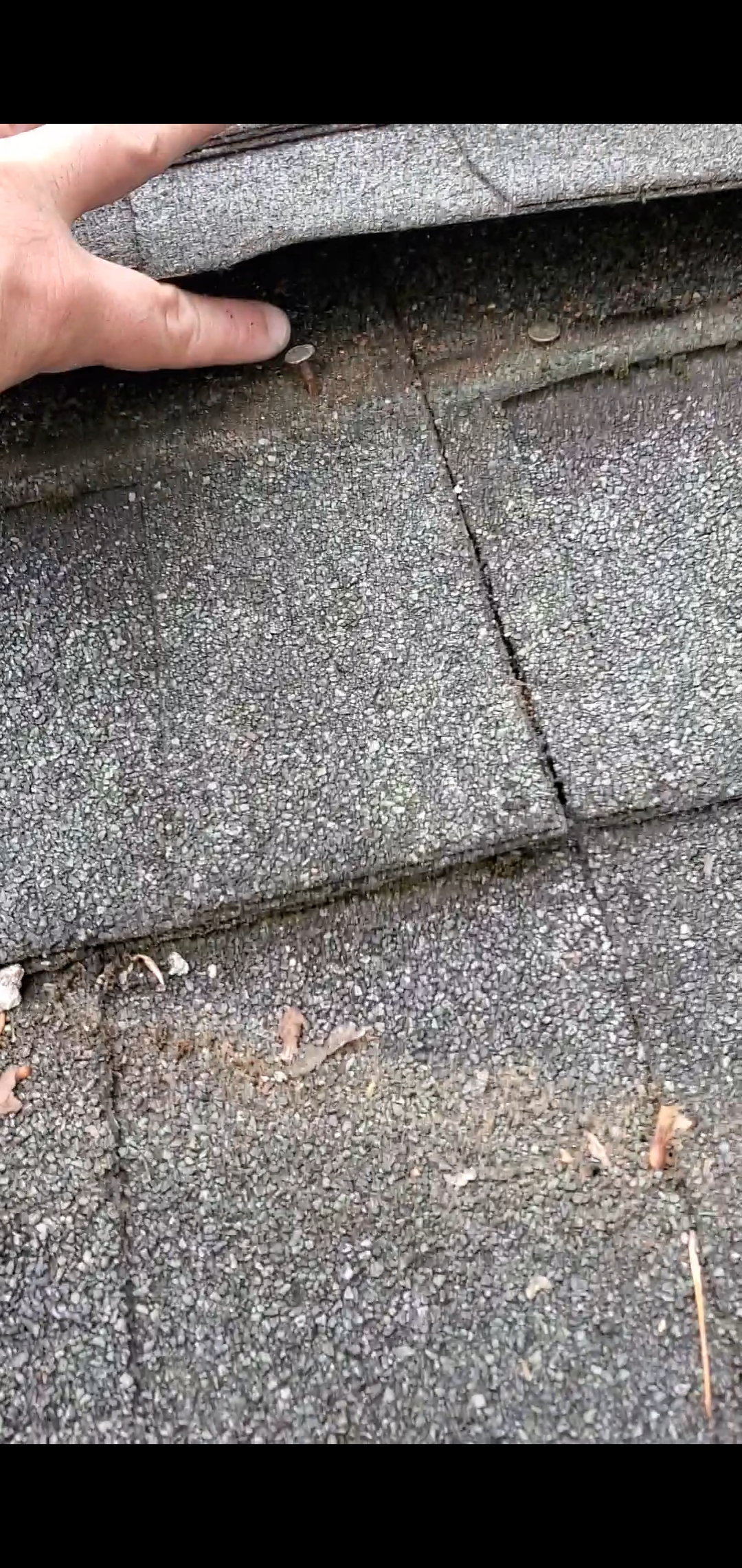This is a picture of worn out shingles that are lifting.