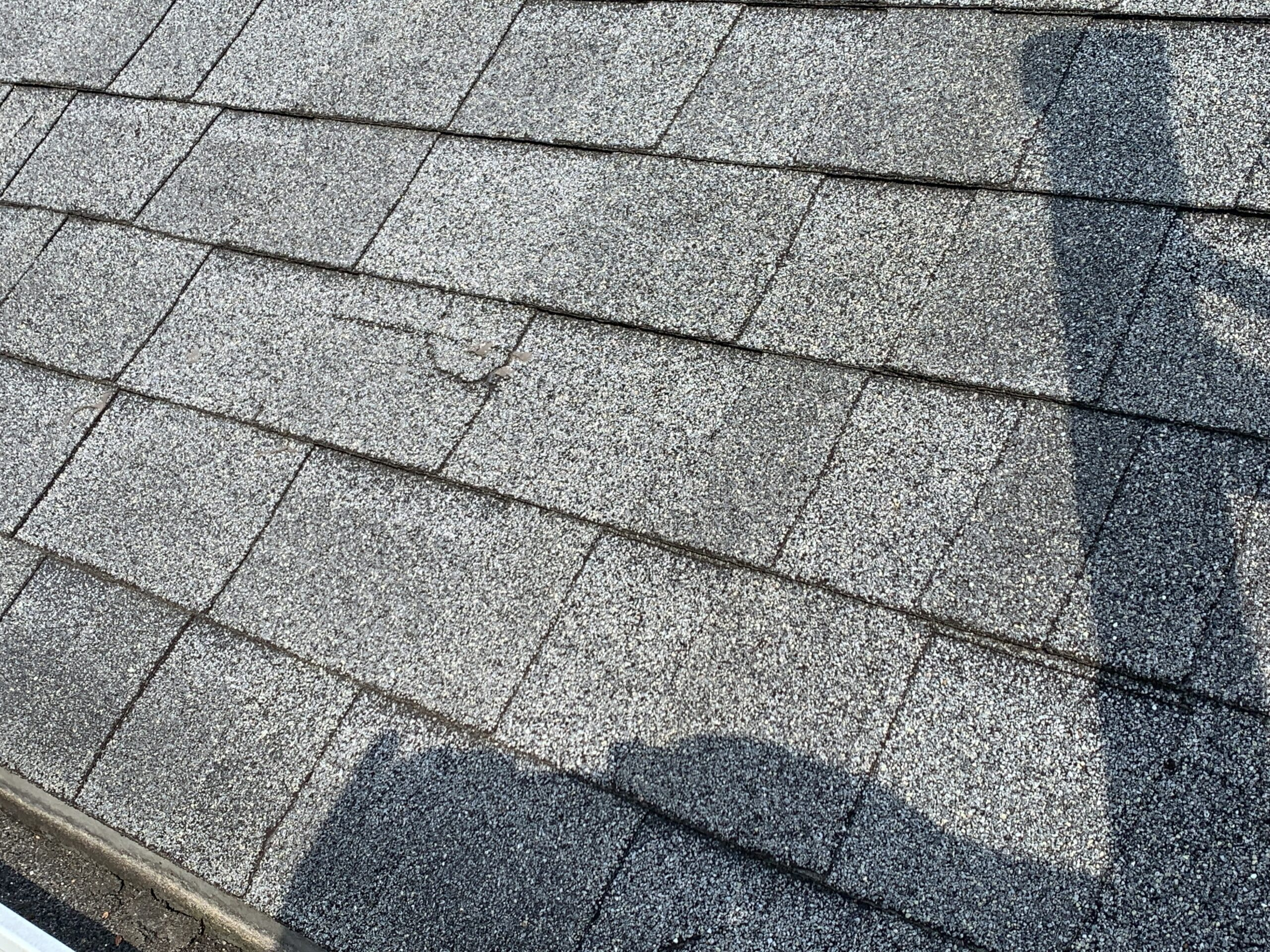 this shingle appears to have some damages from wind