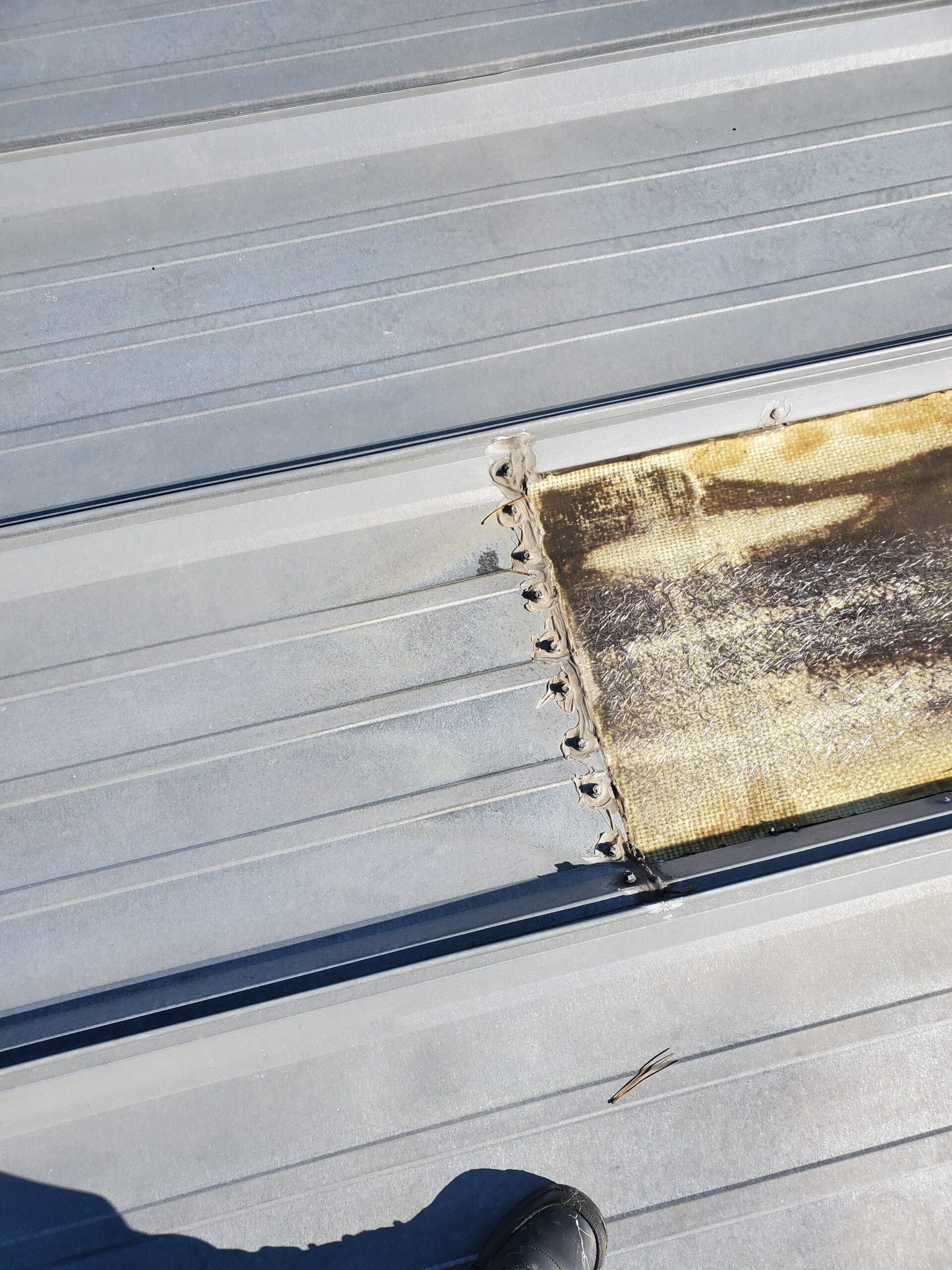 this is a picture of a gray metal roof and the screws that are holding down the skylight