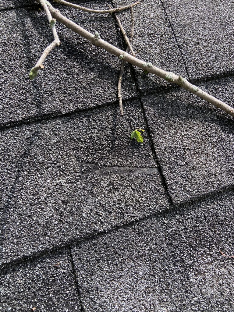 picture of a shingle on a roof that has fiberglass matt showing