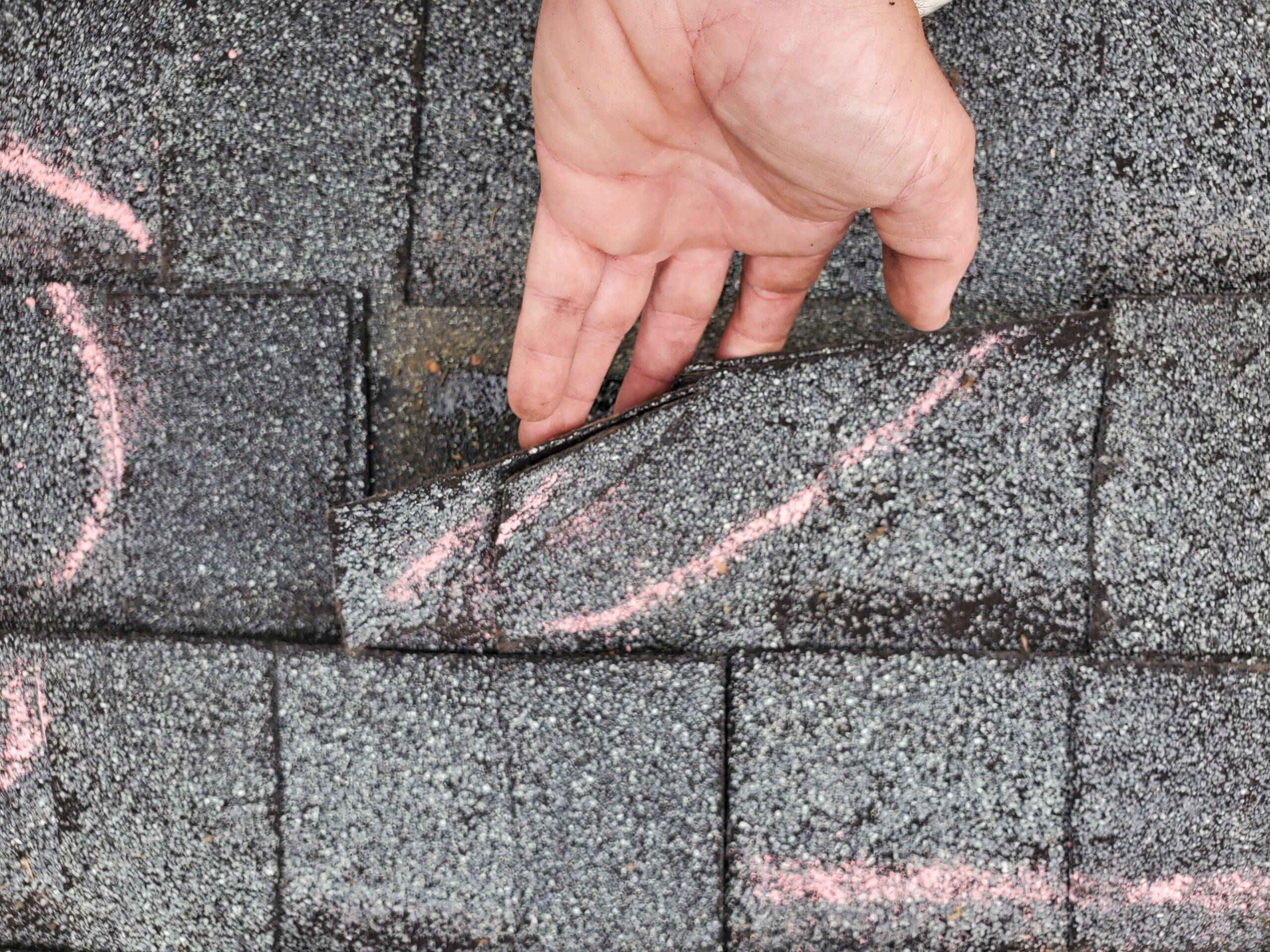 this shingle is lifting and has creases because of wind damages