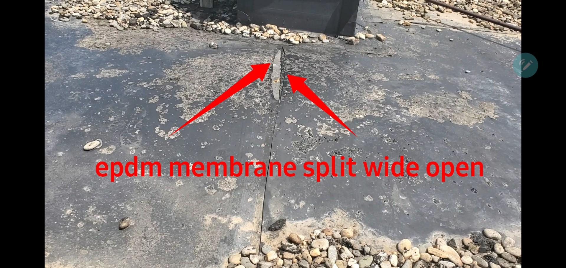 Split wide open
