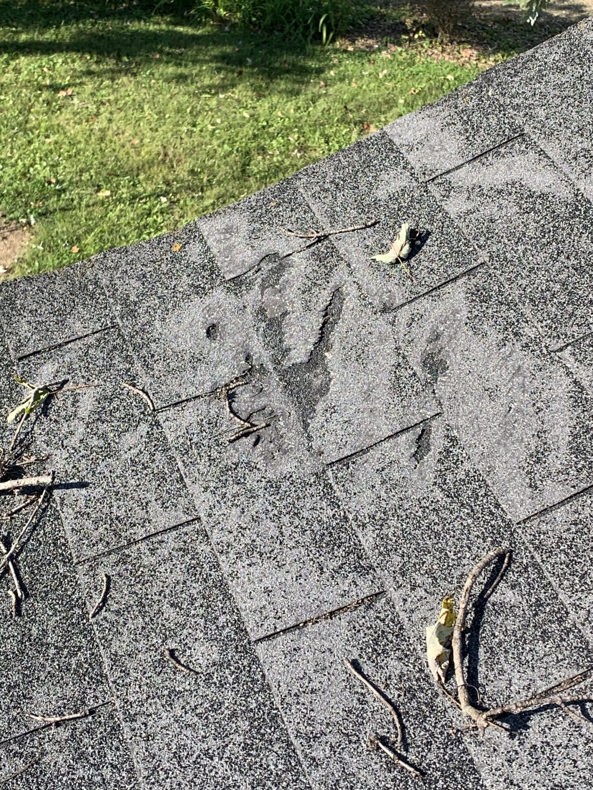 Damaged shingles on residential home