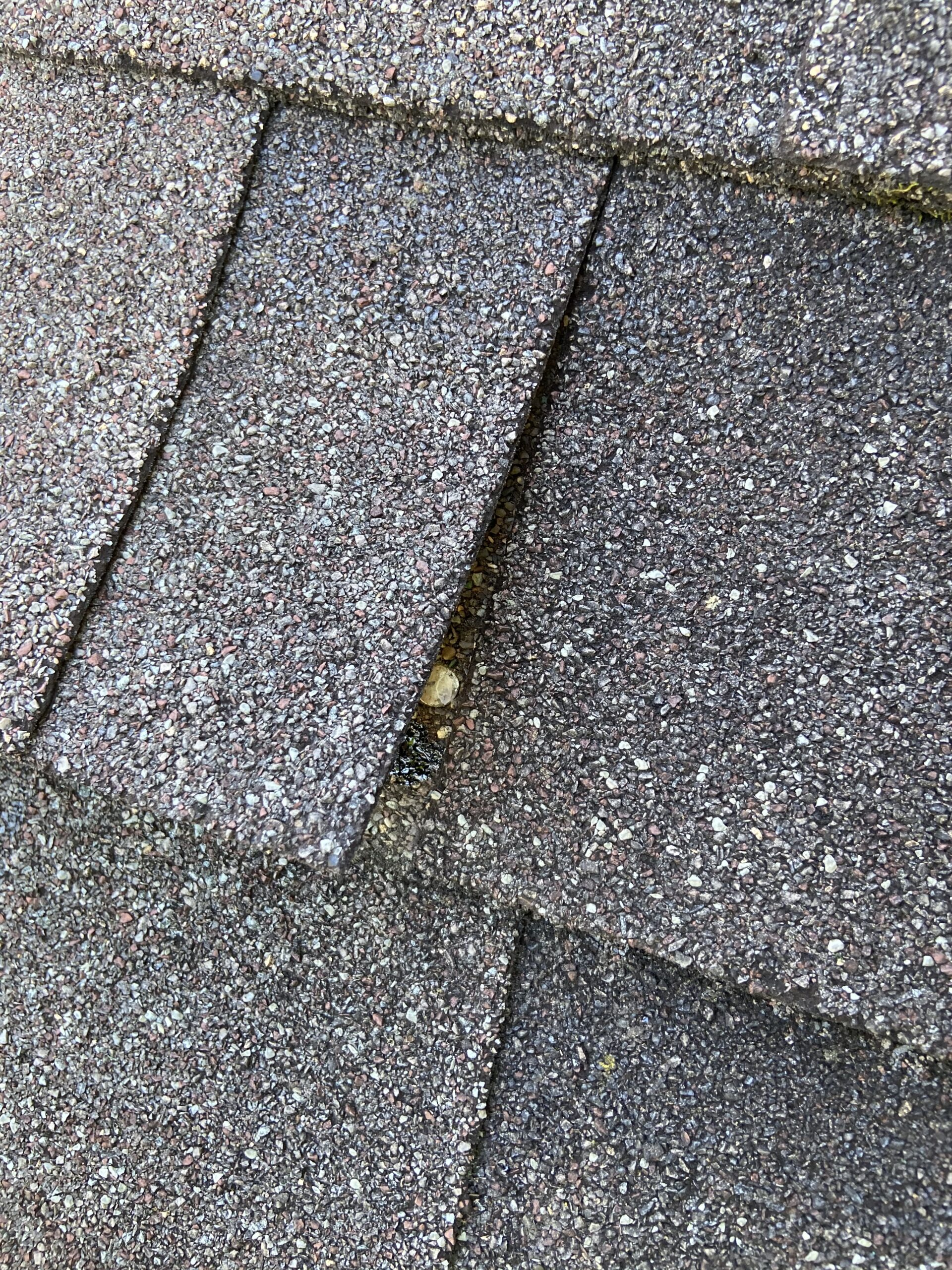 Is a picture of a nail that has missed placed on a shingle roof the nail is at the union of two shingles