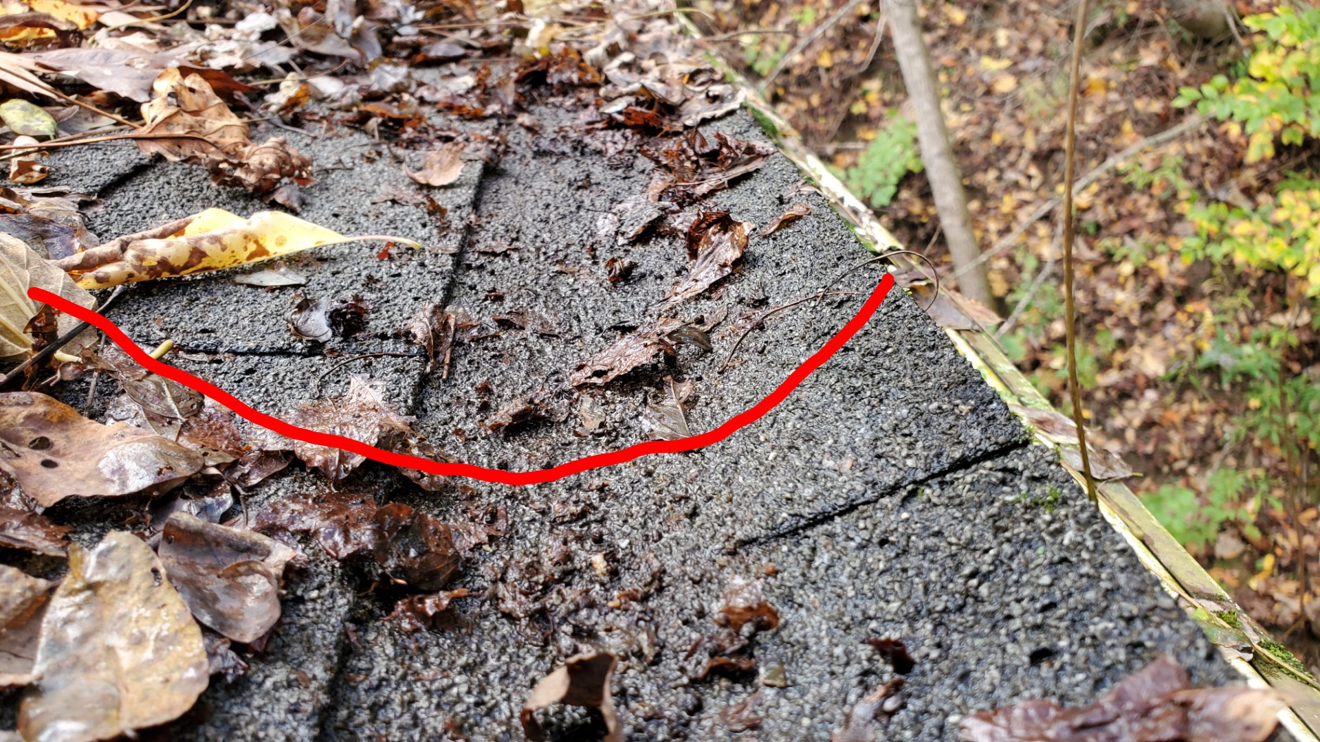 This is a picture of shingles covered in wet leaves and debris. There is a red line showing the shingles are dipping down