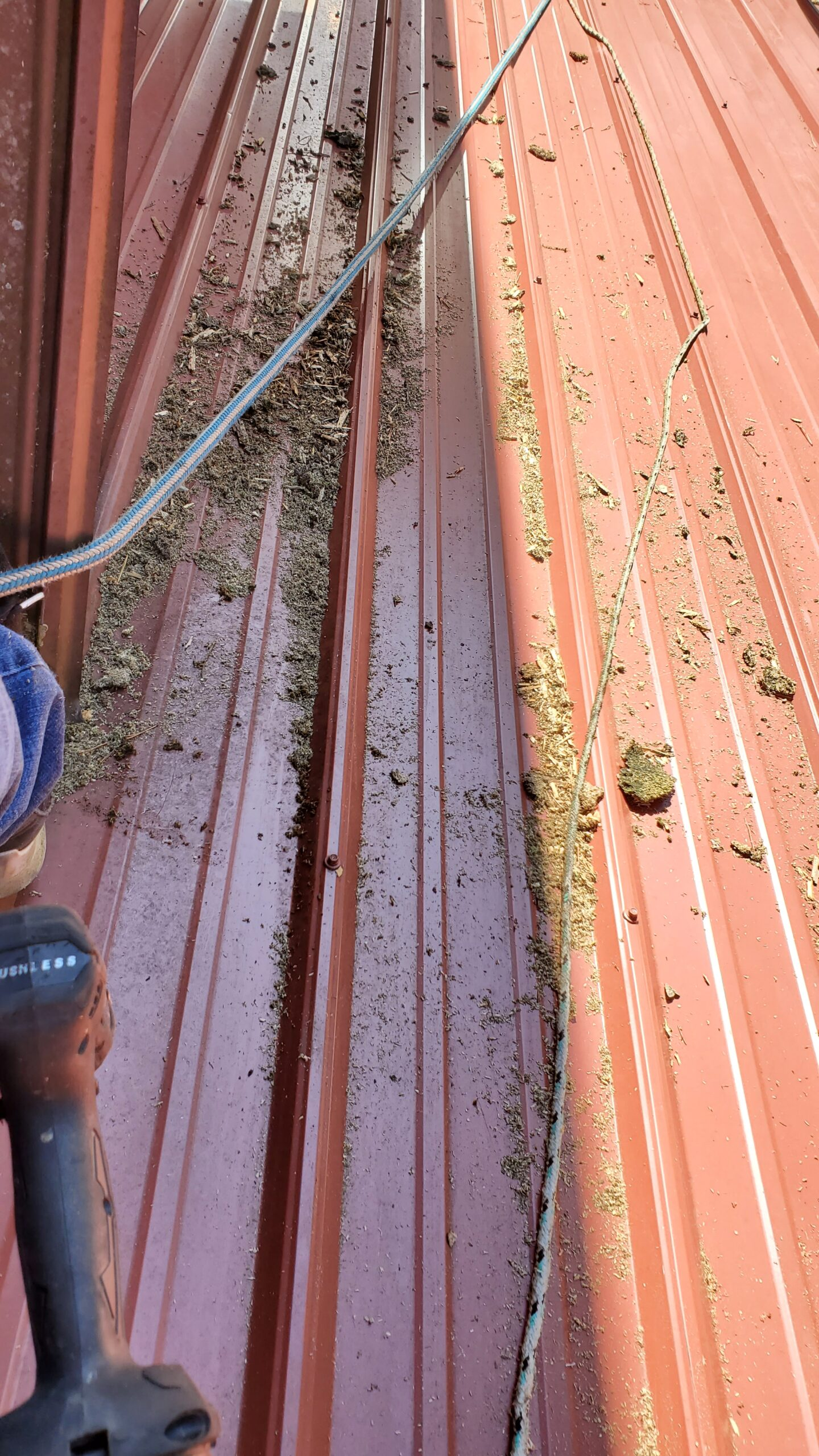 This is a picture of a bunch of sawdust and debris all over a metal roof
