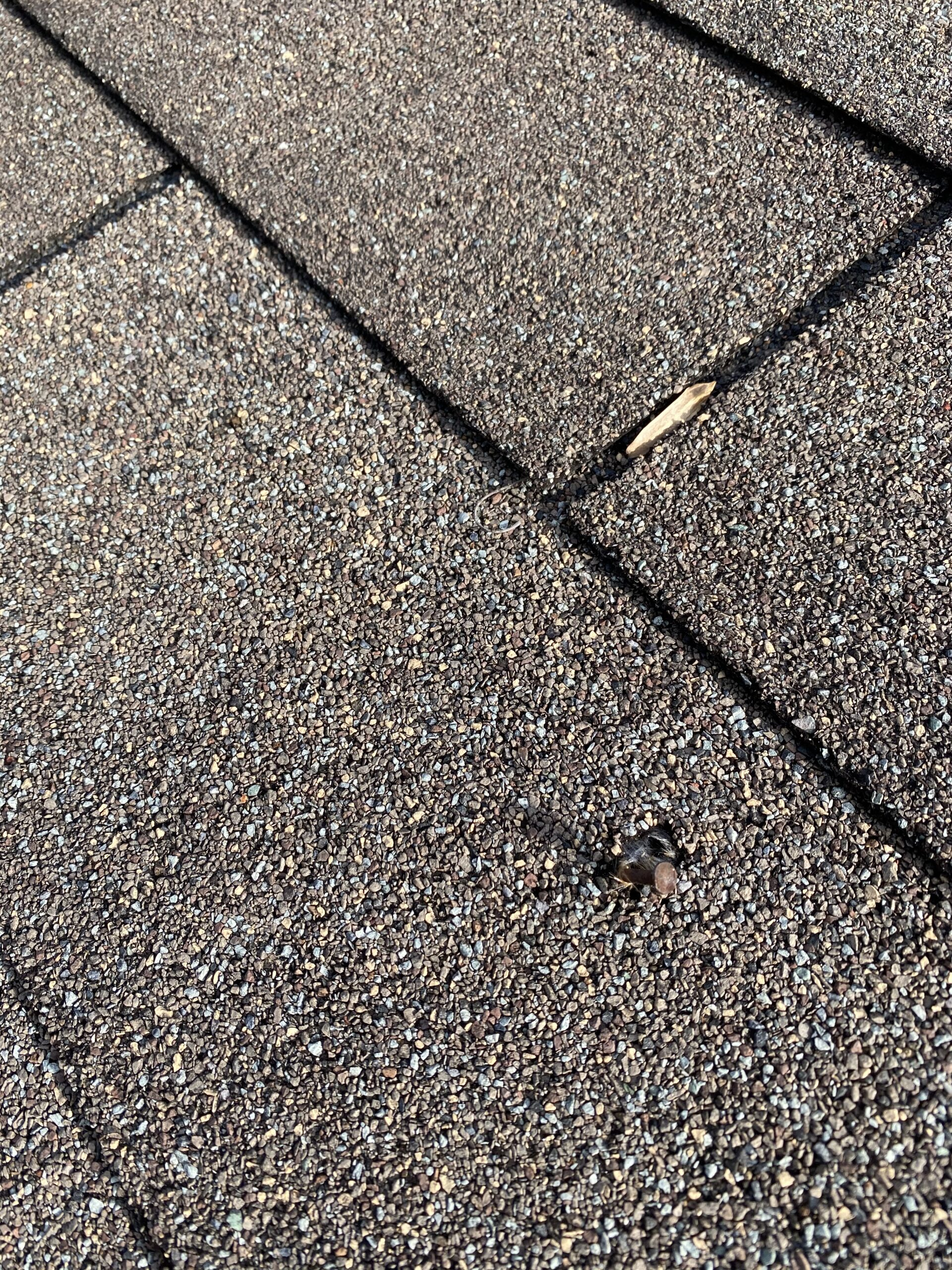 This is a picture of a nail that was sticking out of the shingles.
