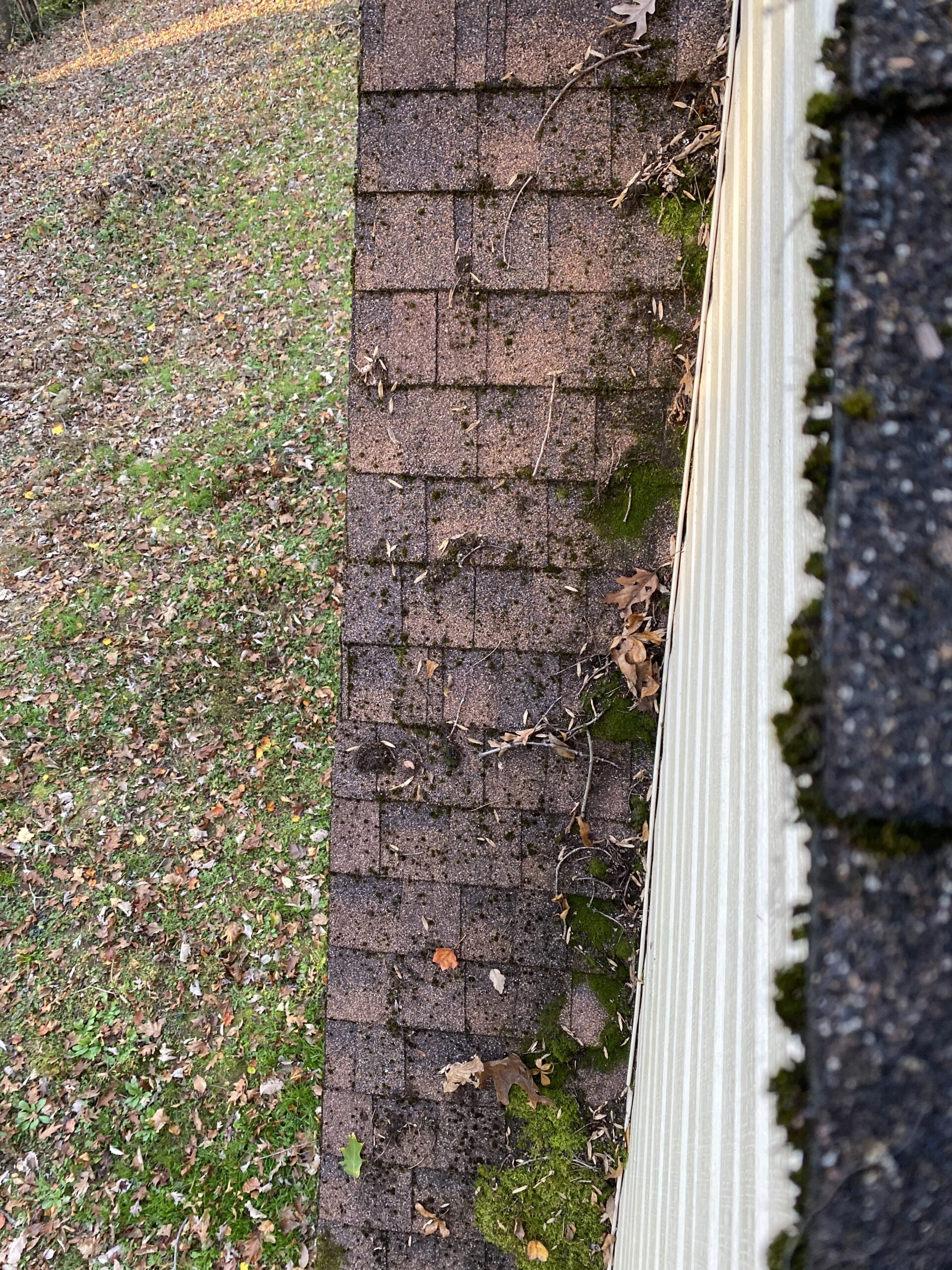 These are brown shingles on a gable that need to be replaced