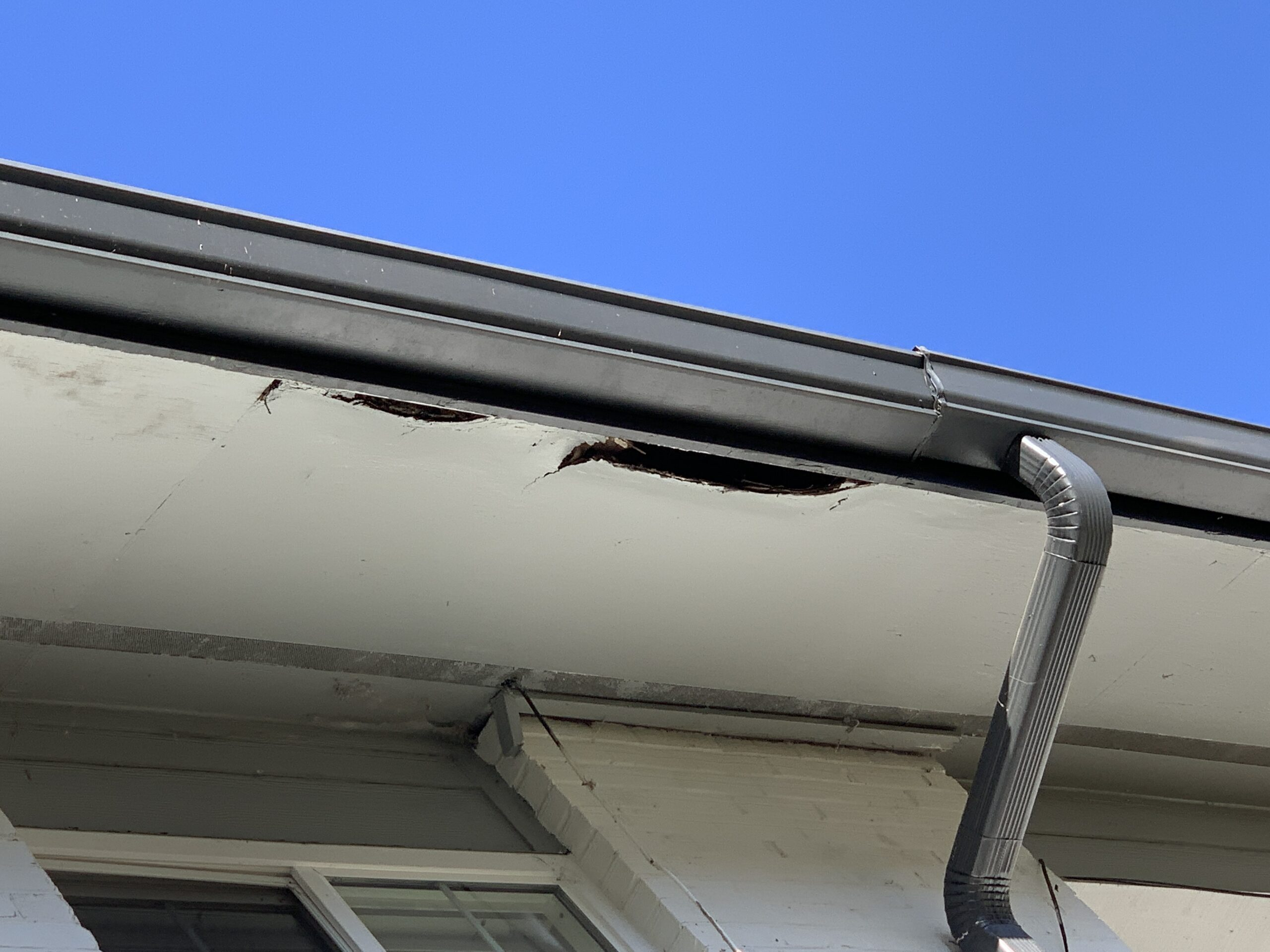 The soffit is rotting and there are visible holes caused by rot from roof leaks and gutter leaks