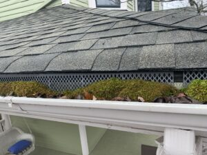 The gutters are in poor condition, experiencing blockages and growing mouse and pulling away from the facia boards