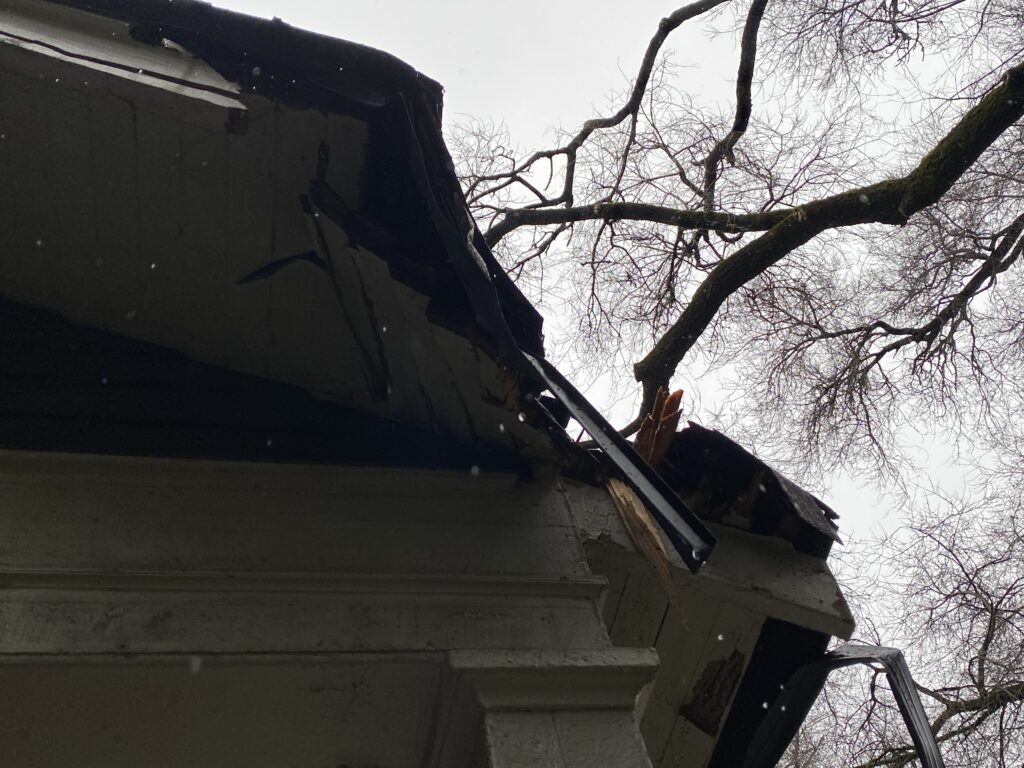 This is a picture of a gray roof that has been damaged by a tree