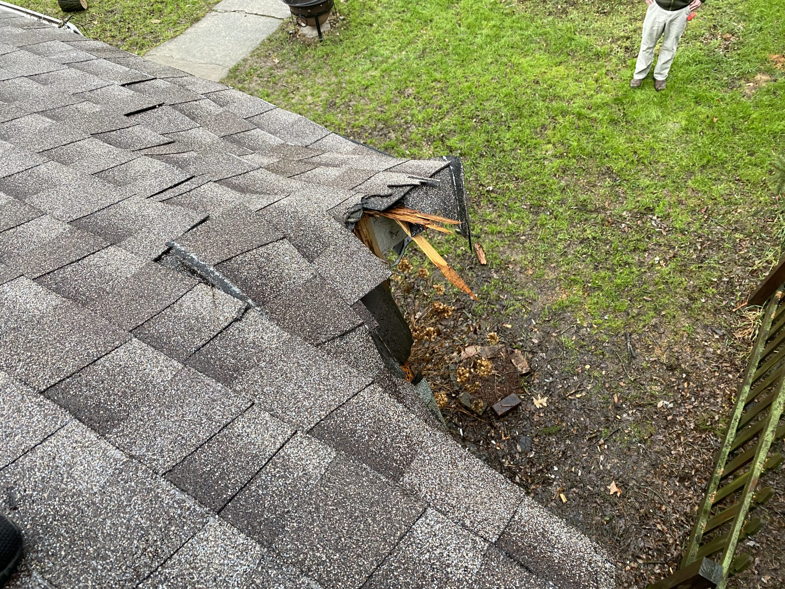 This is a picture of a gray roof that has been damaged by a tree.