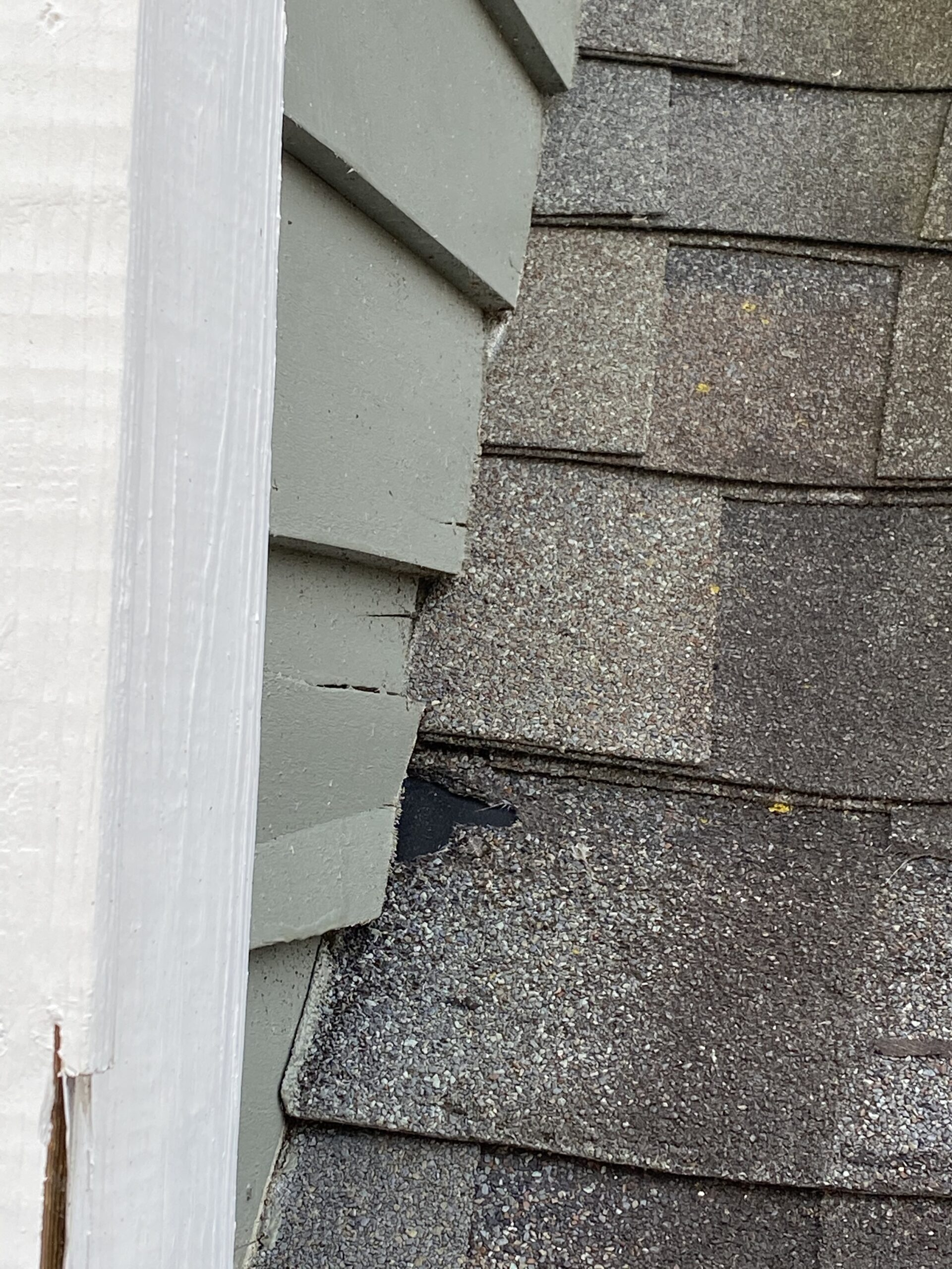 This is a picture of a dark brown shingle that is damaged