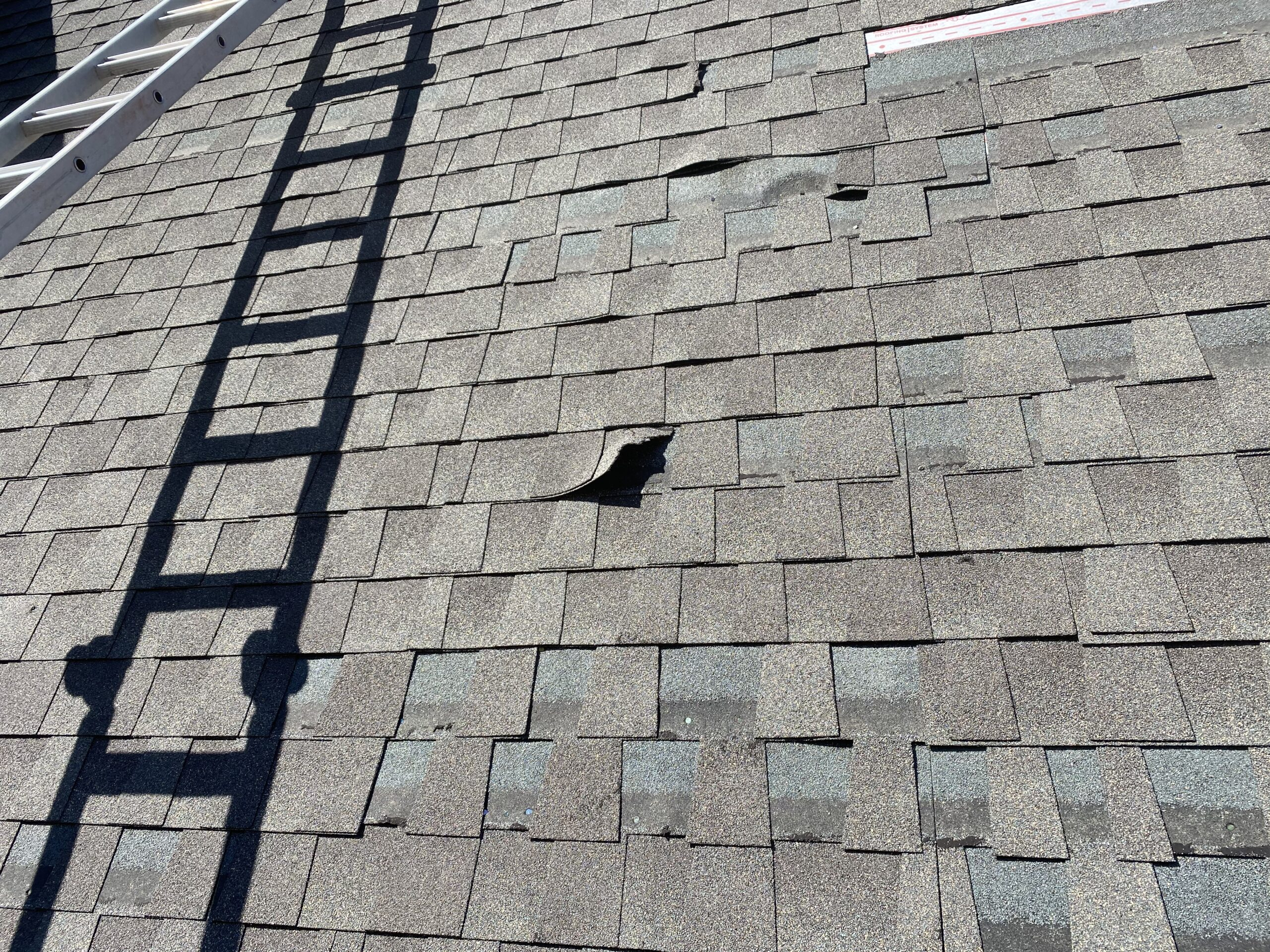 This is a picture of shingles that are bent and torn