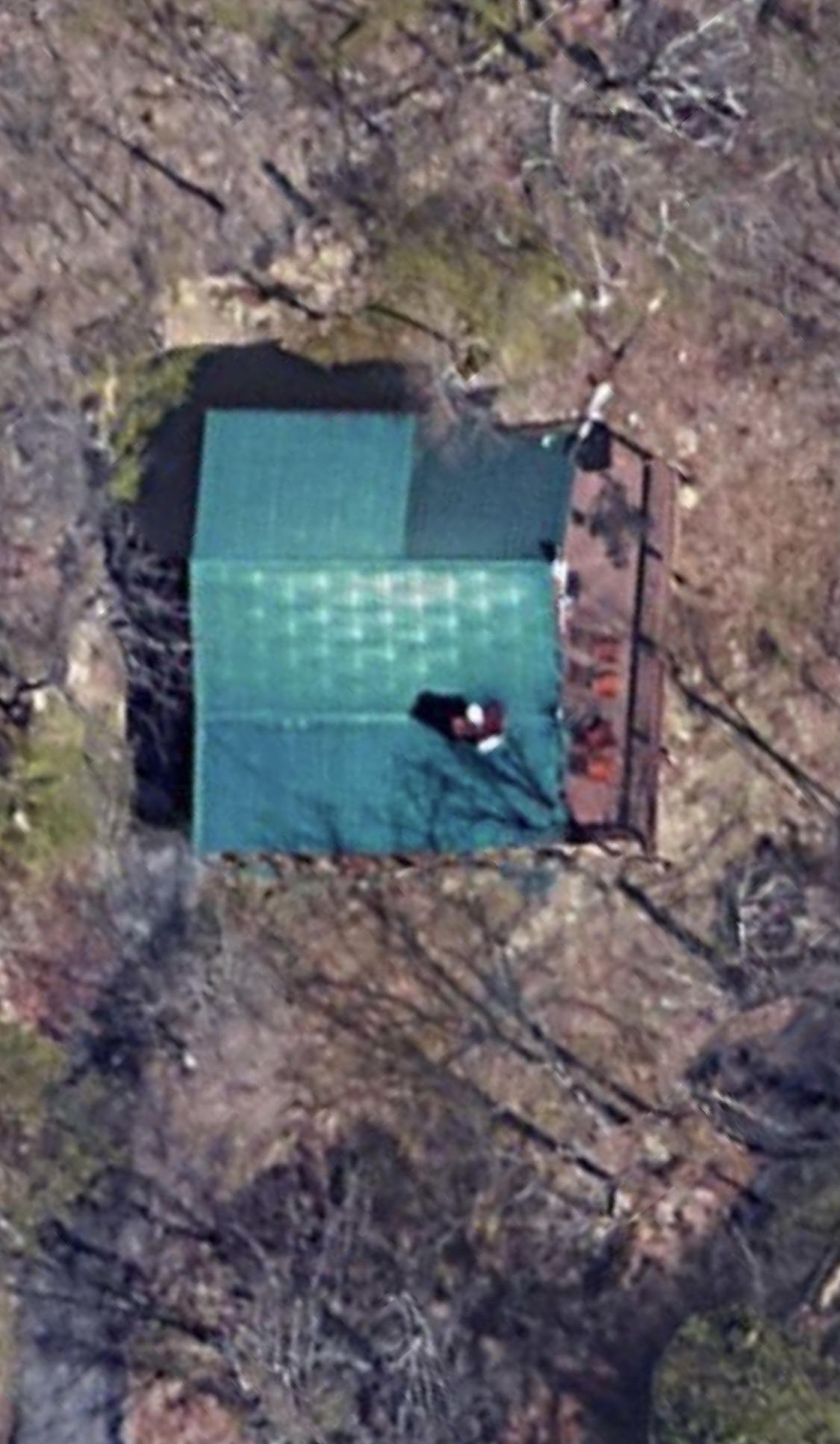 This is an aerial view of a green metal roof cabin