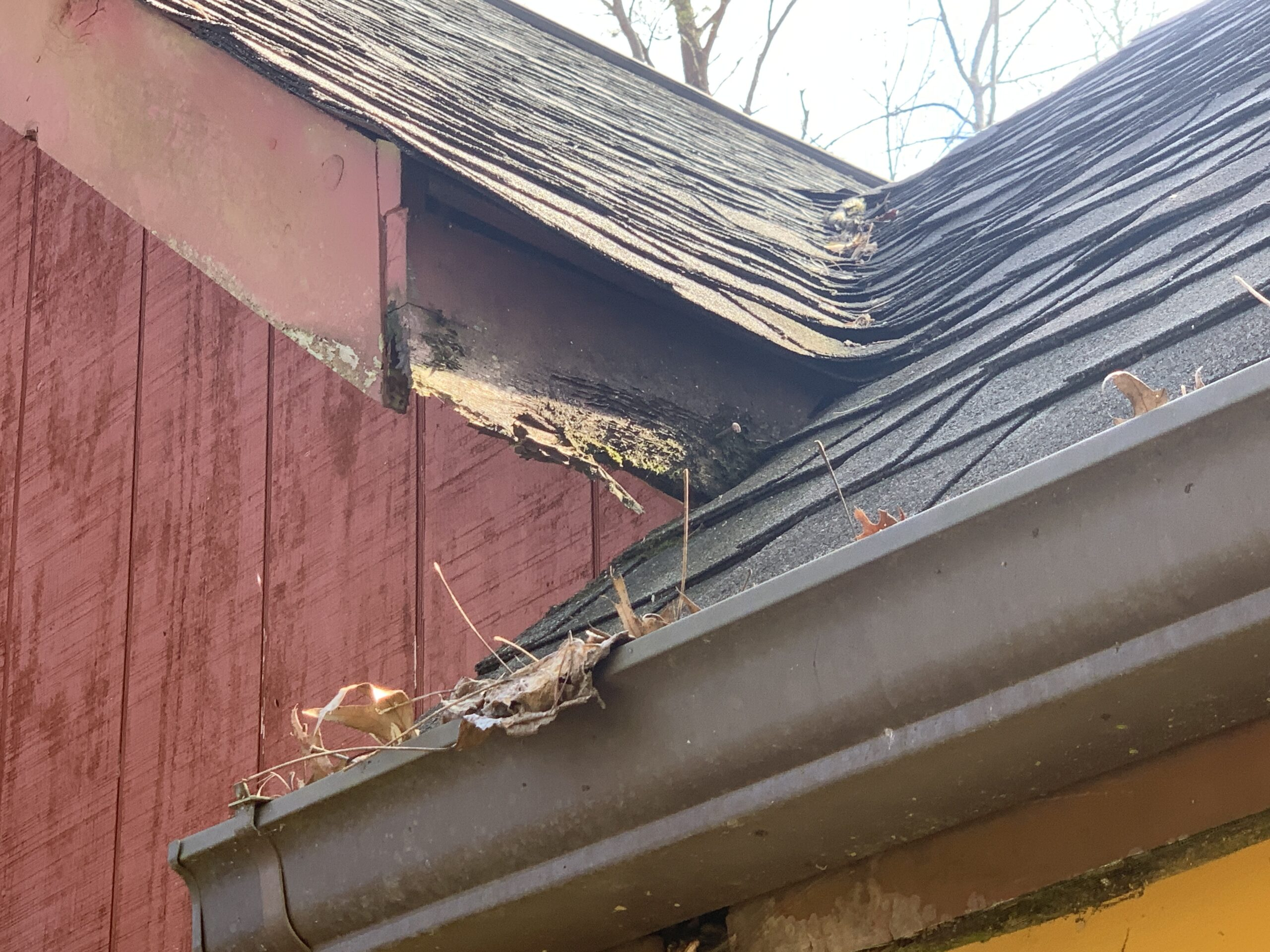 Areas of rotting facia and siding