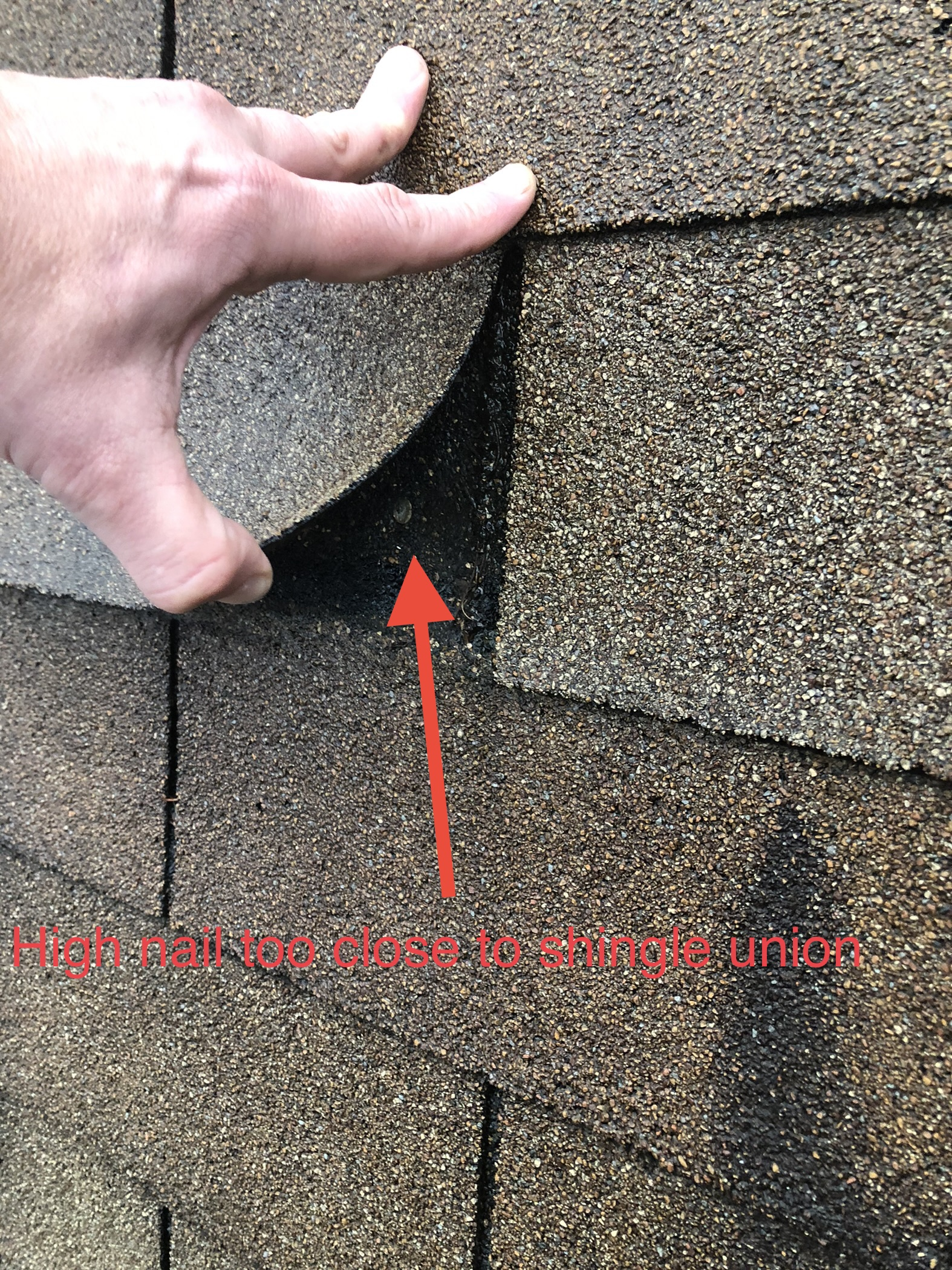 This is a picture of a shingle roof that has been miss nailed in Knoxville Tennessee