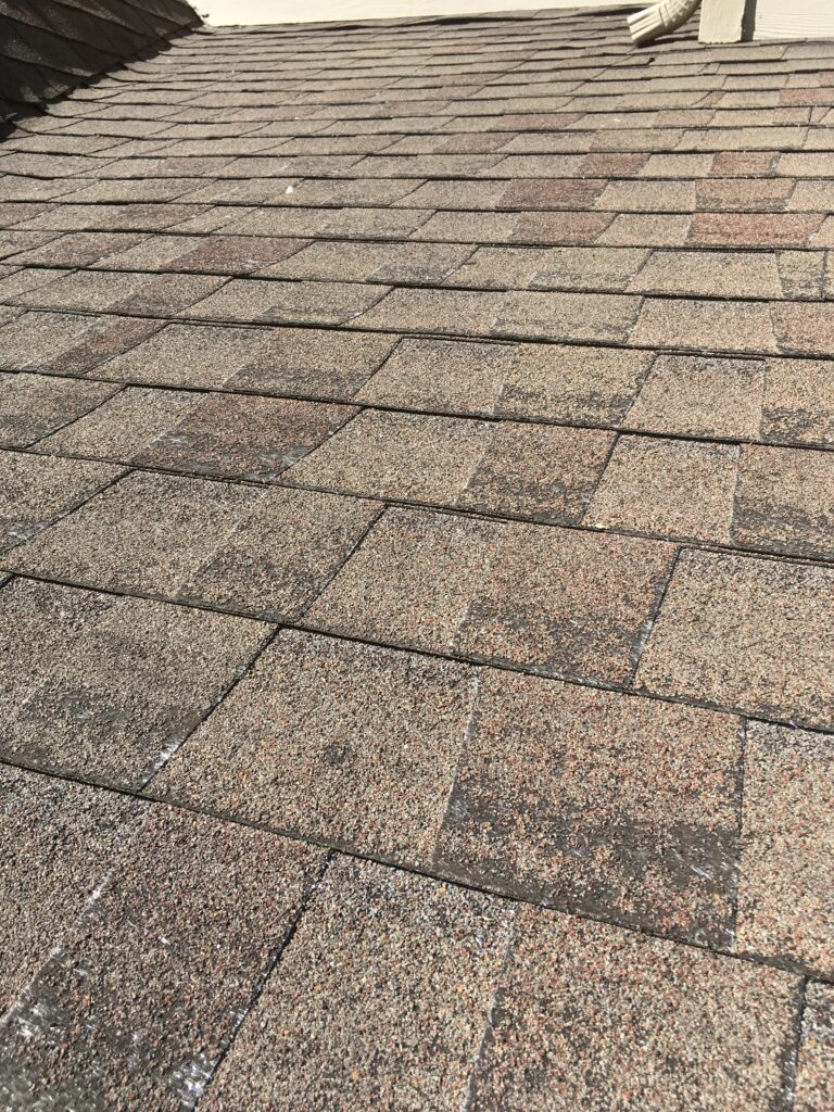 This is a shingle that has fiberglass mat showing