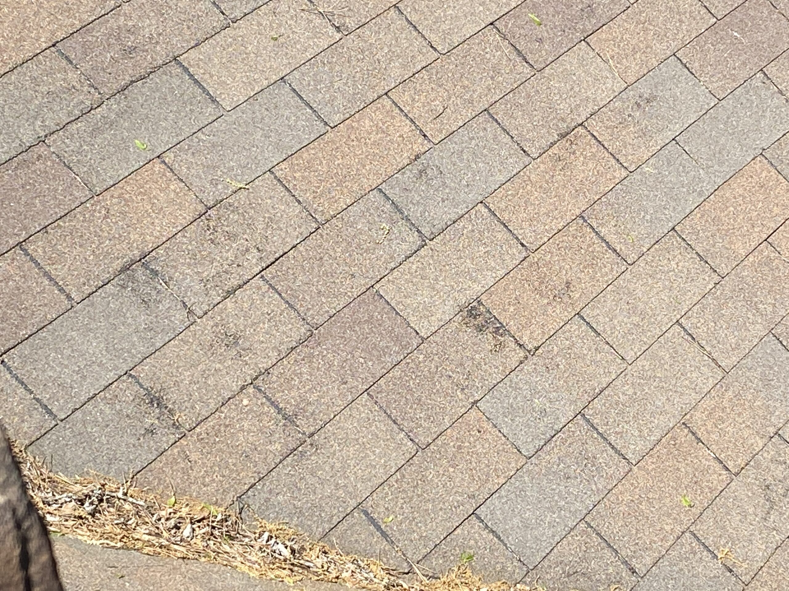 This is a picture of a three tab shingle that has some damage to it