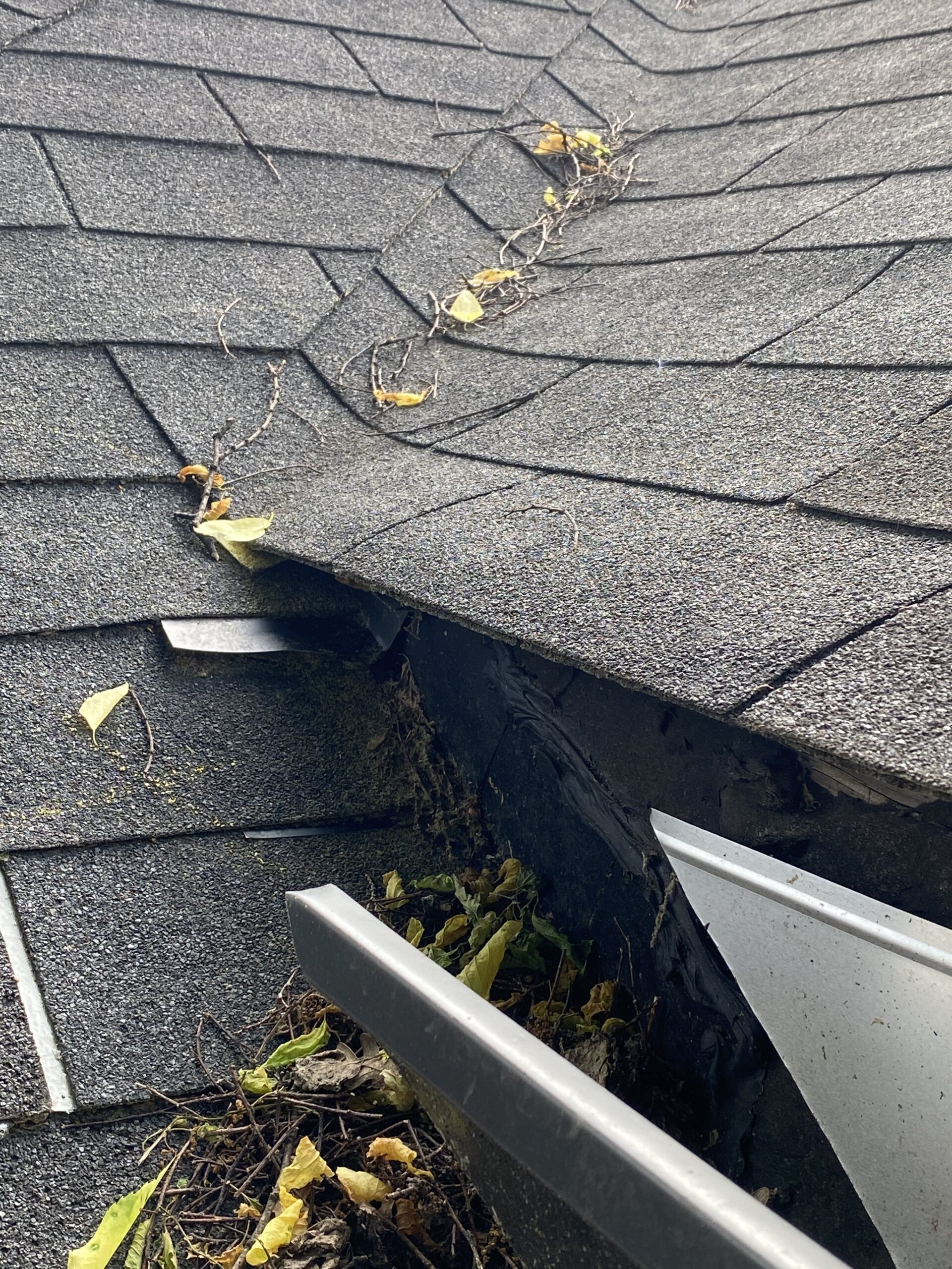 This is a picture of the end of a gutter that empties onto the roof