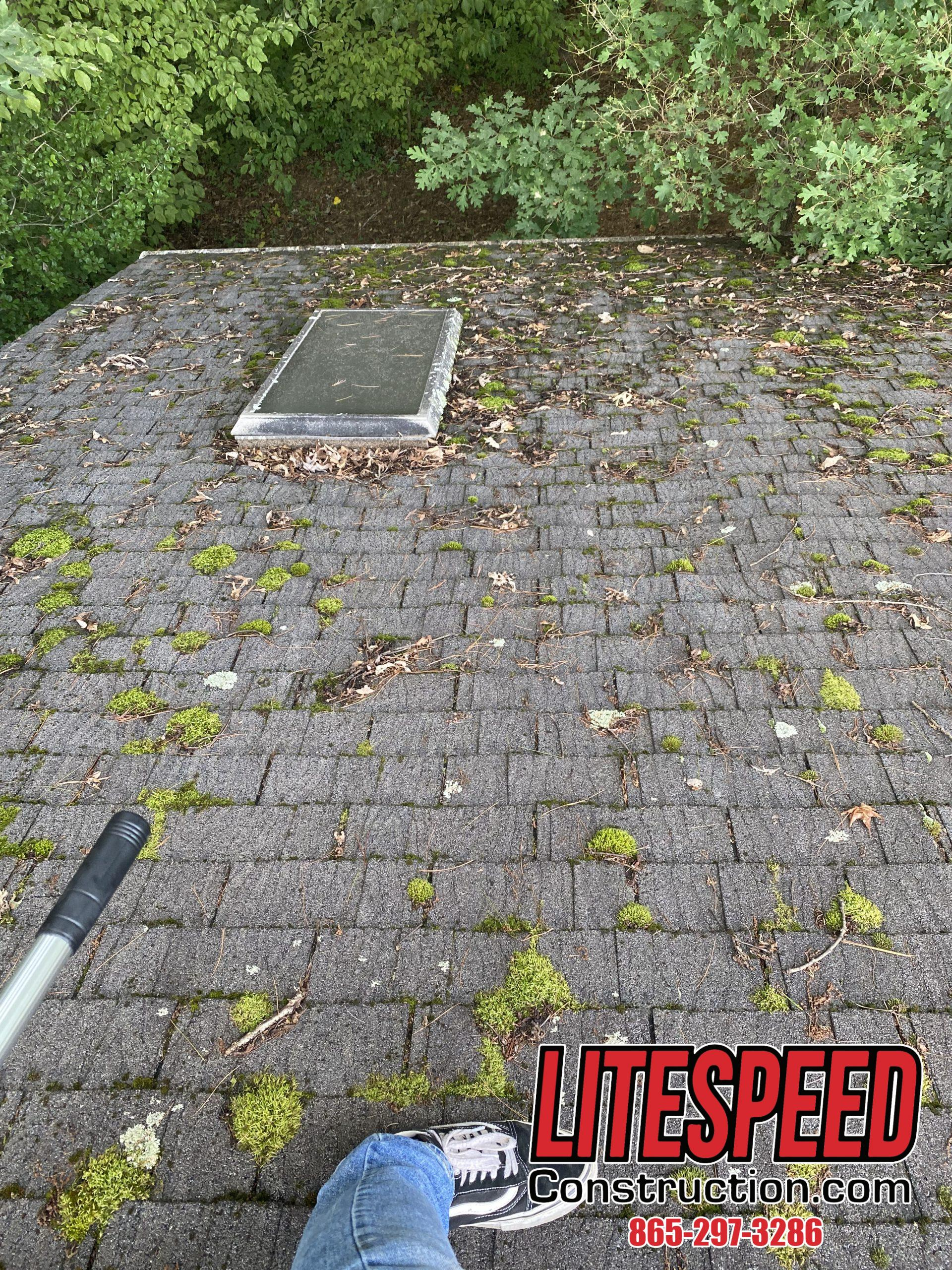 This is a picture of a shingle roof with lots of moss growth and stains.